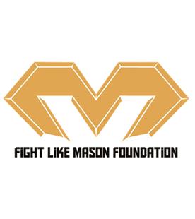 fight-like-mason